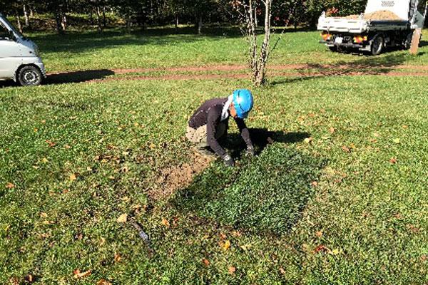 張芝を施工