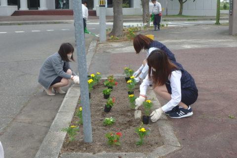 池田町駅前通りの環境美化